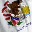 Illinois Flag Closeup