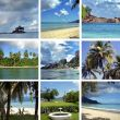 Collage of images of Seychelles