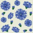 seamless pattern with blue cornflower