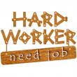 Hard Worker Need Job